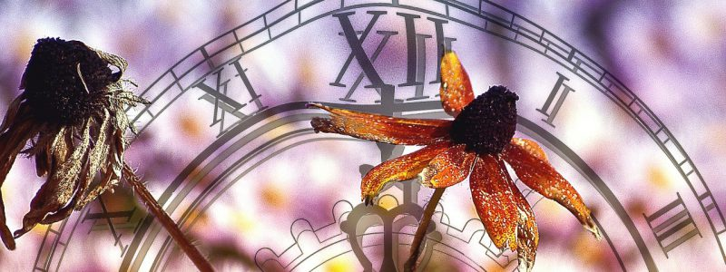 passing of time represeented by flowers and a clock face